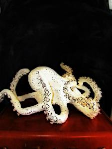 cream and Maroon Paper Mache Octopus